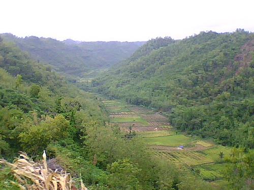 lembah sungai purba bengawan solo