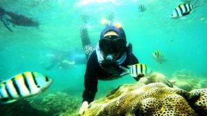 paket wisata snorkel dan goa jomblang